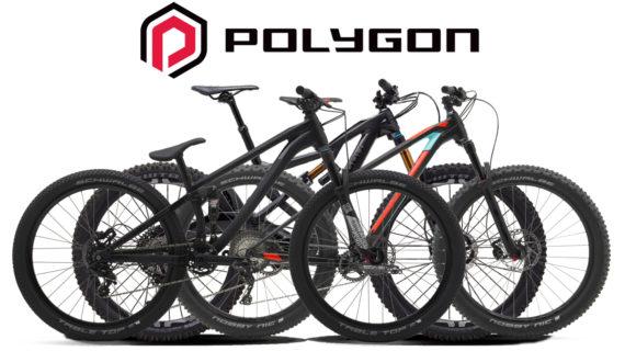 Polygon, Merek Sepeda Produk Indonesia Kualitas Dunia